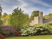 Aire & Wharfe National Trust Devon Delights 2020